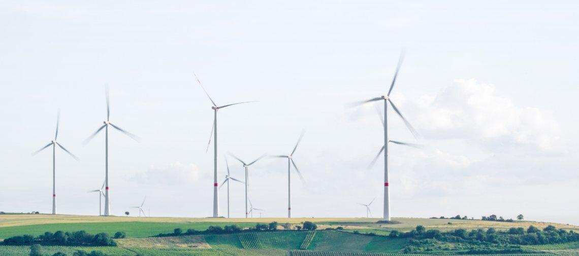 Colruyt Group pleit voor hernieuwbare energie