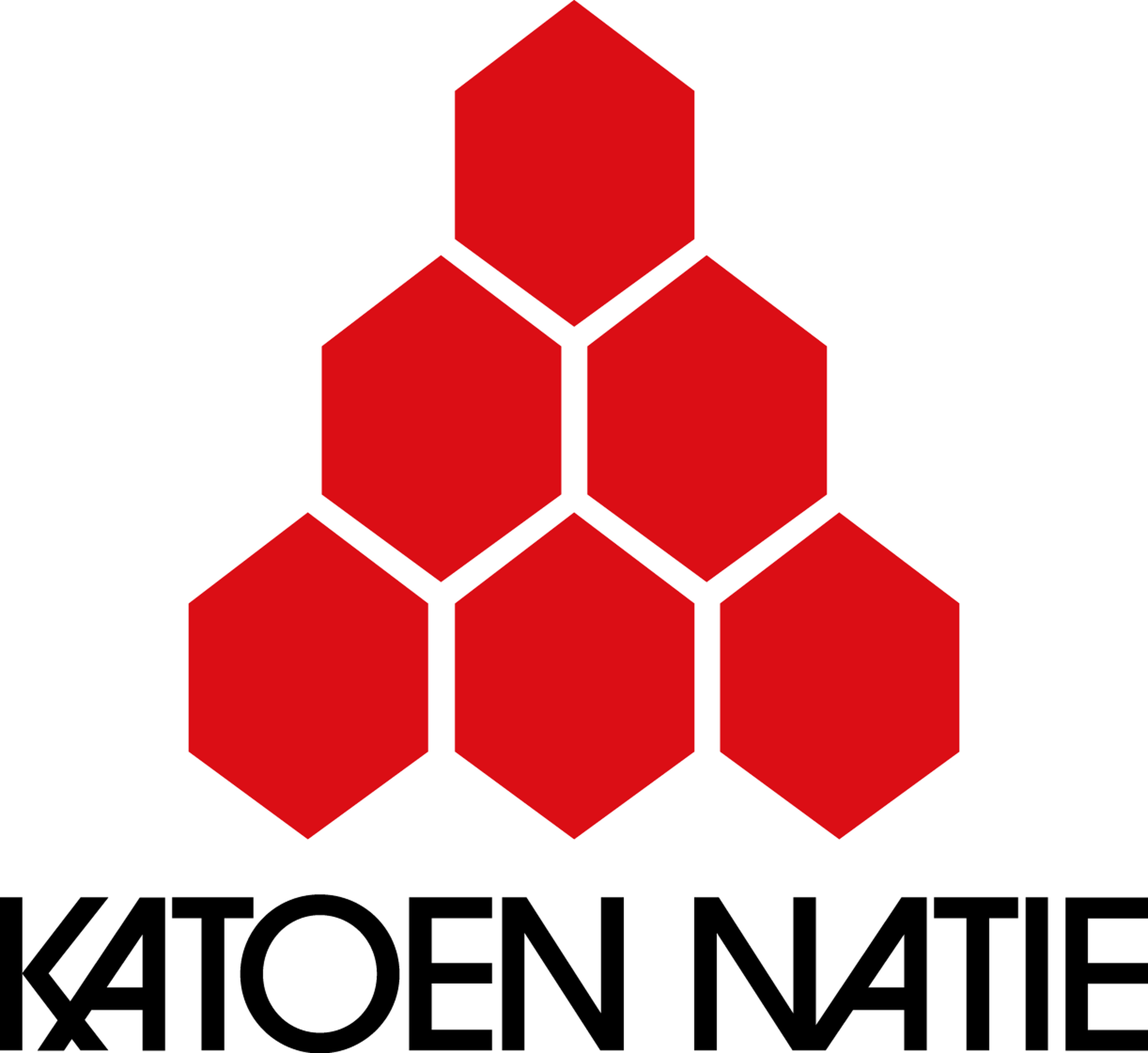 jobs at katoen natie jobs